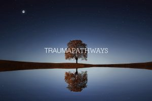 Trauma Pathway's Website